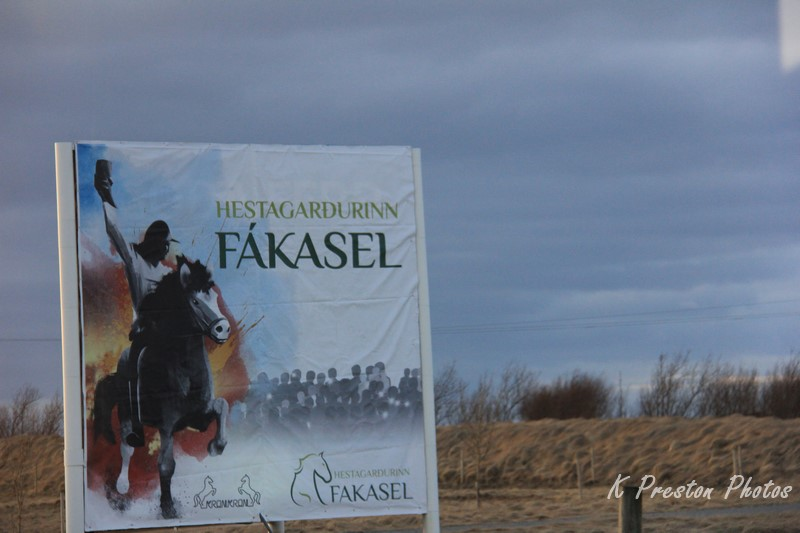 Fakasel Horse Farm